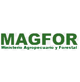 Magfor