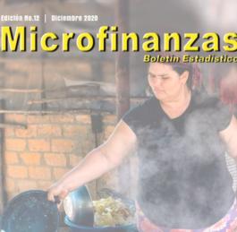 Edición No. 12 Boletín Estadístico de Microfinanzas